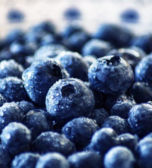 blueberry-3460423_960_720